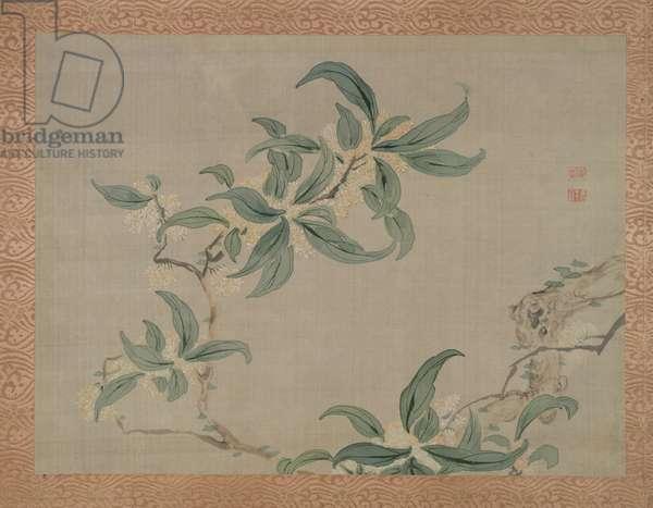 Blossom, 1851 (watercolour on silk)