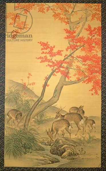 Deer under a maple tree, (watercolour on silk)