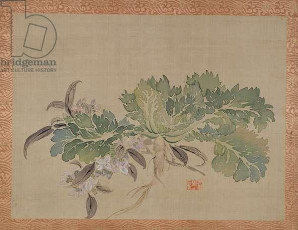 A tuberose, 1851 (watercolour on silk)