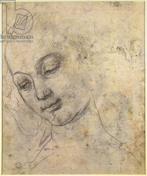 Portrait of a Female head (black chalk on paper)