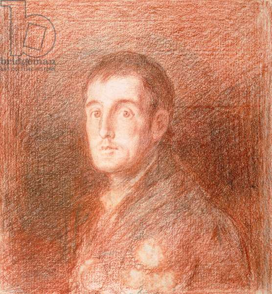 Study for an equestrian portrait of the Duke of Wellington (1769-1852) c.1812 (red chalk on graphite)