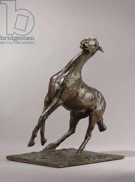 Rearing Horse, modeled c.1870s, cast 1919-21 (bronze)