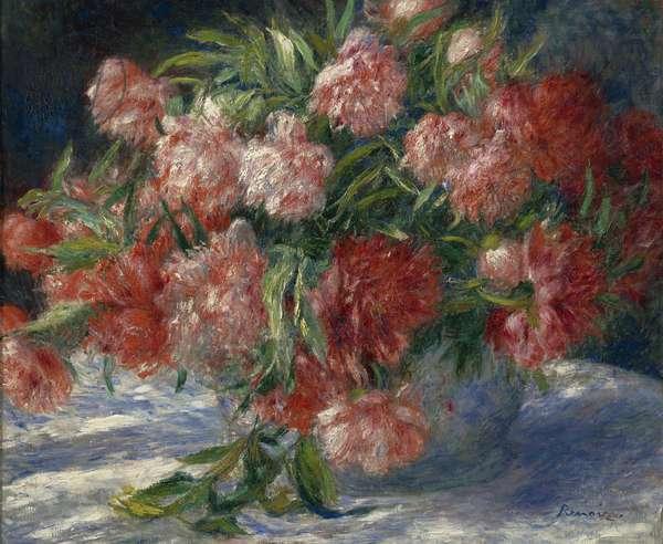 Peonies, c.1880 (oil on canvas)
