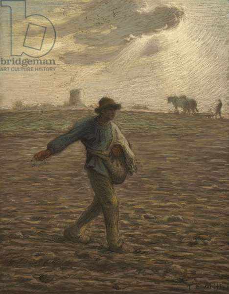 The Sower, c.1865 (pastel on paper)