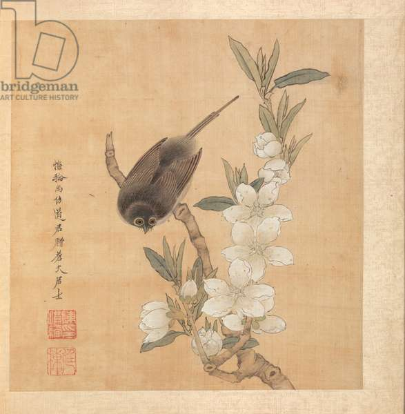 Paintings after Ancient Masters: A Bird and Peach-Blossom Branch, album leaf, 1598-1652 (ink and colour on silk)
