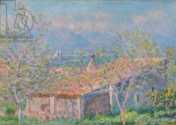 Gardener's House at Antibes, 1888 (oil on canvas)