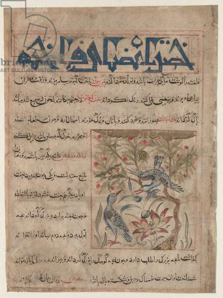 Qualities of Ringdoves (recto); On the Benefits of Quails (verso), from a Manafi' al-Hayawan (On the Usefulness of Animals) of Ibn Bakhtishu' (d. 1058), c. 1300 (opaque watercolor, ink, and gold on paper)