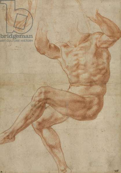 Study for the Nude Youth over the Prophet Daniel, for the Sistine Ceiling, 1510-11 (red chalk on paper)