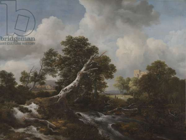 Low Waterfall in a Wooded Landscape with a Dead Beech Tree, c. 1660-70 (oil on canvas)
