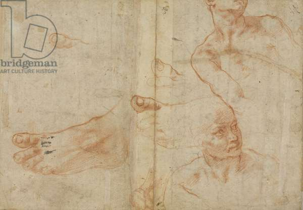 Figure studies for the Sistine Ceiling, 1510-11 (red chalk on paper)