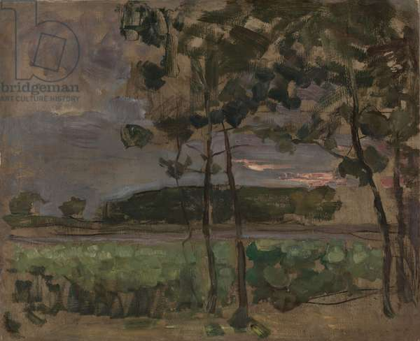 Field with Young Trees in the Foreground, c.1907 (oil on paper laid on board)