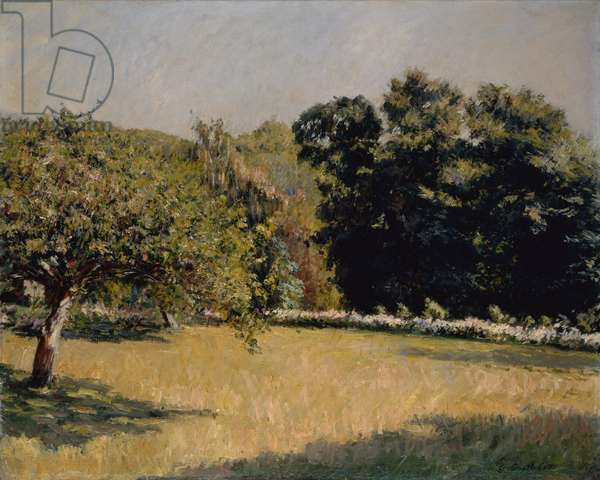 A Garden in Trouville, 1882 (oil on canvas)