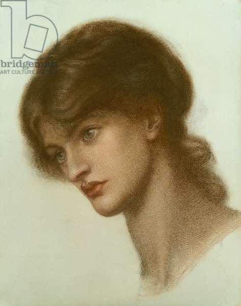 Portrait of a Lady, 1870 (chalk on paper)