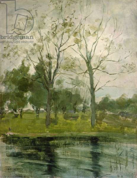 Two Trees Silhouetted behind a Water Course, 1900-1902 (oil on canvas laid on board)