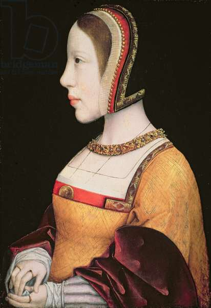 Queen Elisabeth von Habsburg (1501-26) of Denmark (1501-26) c.1514-15 (oil on oak board)