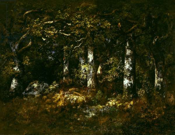Forest of Fontainebleau, 1868 (oil on canvas)