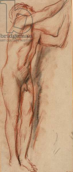 Male nude (chalk on paper)