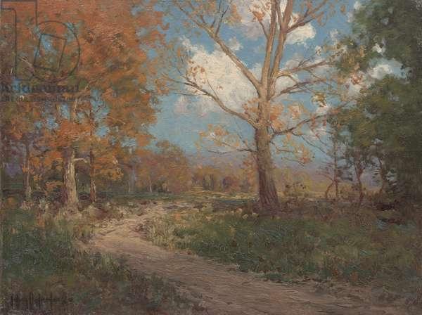 October Sunlight, 1911 (oil on canvas)