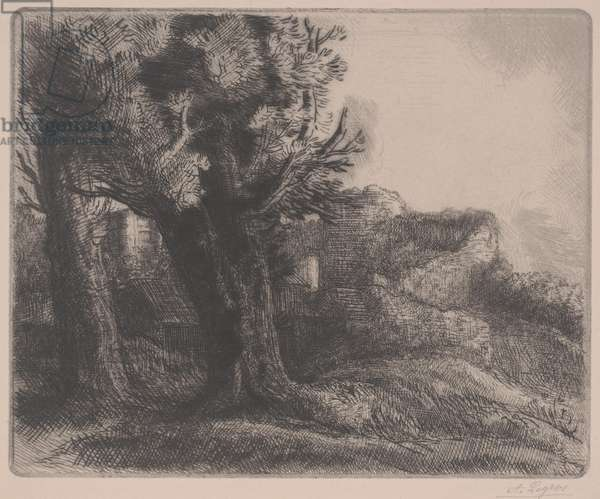 In the Ruins, mid 19th-early 20th century (etching)