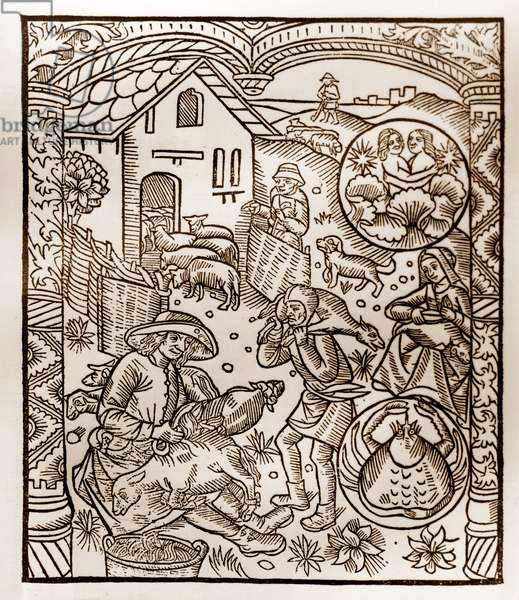 """Shepherd's calendar - The Labours of the Months - June - Woodcut from the 1496 book printed by Guy Marchant (Guido Mercator) at Troyes - Wood engraving in """"Le grand Calendrier et compost des shepherds"""""""" -"""