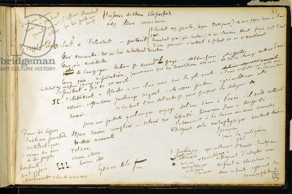 Folio 41 of the workbook n. 19 Manuscript page of Gustave Flaubert's drafts. Plans for Bouvard and Pecuchet. BHVP.