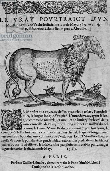 The vray would be of a monster nay of a cow the dixiesme iour of May, 1569 in the village of Bellifontaine, two leagues near Abouille - publisher Jean Dallier, 1569