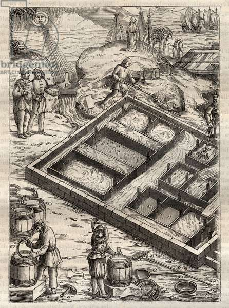 """Producing salt by evaporating sea water in salt pans. From """""""" De re metallica"""""""" by Georgius Agricola (Georg Bauer). (Basel 1556) - Salt production: sea water poured into large bowls evaporates and leaves salt depot. Engraving from """""""" De re metallica"""""""" by Georgius Agricola (Georg Bauer) (1494-1555), 1556."""