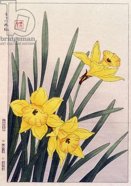 Close Daffodils - Japanese print