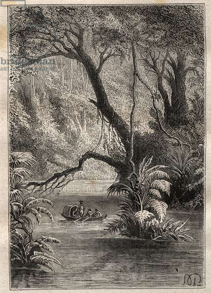 """Expedition to America (1799-1804) by Alexander von Humboldt (1769-1859) and Aime Bonpland (1773-1858): the explorers descend the Orenoque, surrounded by the gigantic trees of the Amazon forest (Cano Pimichin, Venezuela) - illustration taken from """"The Great Mariners of the 18th century"""", 1879 - 1 of the 3 volumes of The """""""" General history of great voyages and of the frequent travelers"""""""" by Jules Verne"""