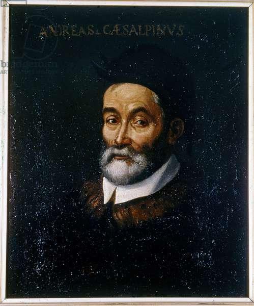 Portrait of Andrea CESALPINO (Cesalpini) (1519-1603) (Andre Cesalpin) Italian medicine and naturalist