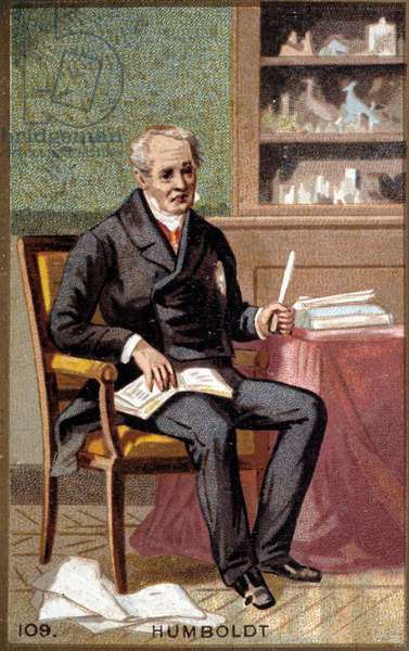 Portrait of Baron Alexander Von Humboldt (Alexander of Humboldt, 1769-1859), German naturalist and traveler. Chromolithography of the 19th century.