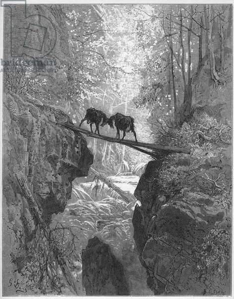 les deux chevres - the two goats - from 'Fables' by Jean de La Fontaine (Lafontaine) (1621-95) - engraving after Gustave Dore (1832-83) - Private collection