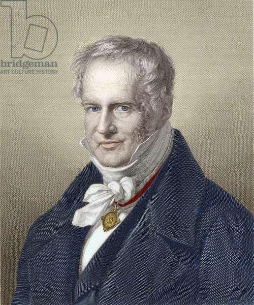 Portrait of Baron Alexander Von Humboldt (Alexander of Humboldt, 1769-1859), German naturalist and traveler.