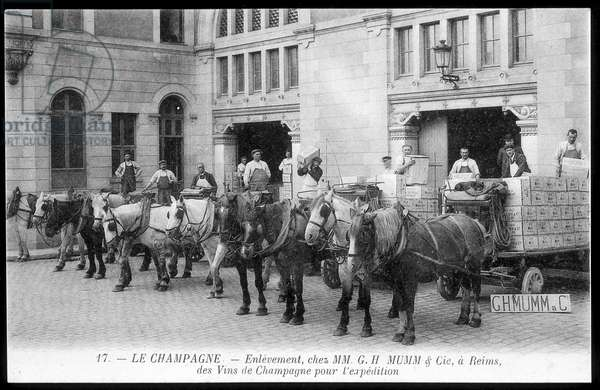 Champagne: collection of champagne wines for shipment to Mumm - postcard, deb. 20th century
