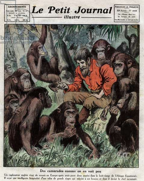 """The English explorer Cherry Kearton (1871-1940) has just returned to Europe after spending two years in the virgin forest of Equatorial Africa. It was the monkeys of which he had become chief who provided for him. Engraving in """""""" Le petit Journal Illustré"""""""", on 23/07/1922. Private collection."""