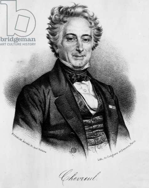Portrait of Michel Eugene (Michel-Eugene) Chevreul (1786-1889), French chemist