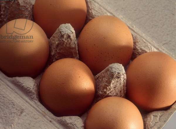 Farm products and organic food: Box of eggs.