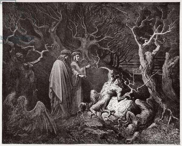 The Divine Comedy (La Divina Commedia, La Divine Comedie), Inferno, Canto 13: The suicides in the forest - by Dante Alighieri (1265-1321) - Illustration by Gustave Dore (1832-1883), 1885