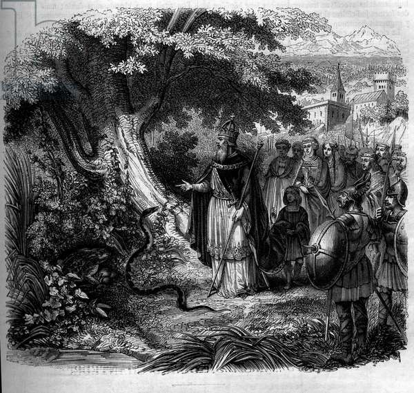 Legend of Charlemagne and the snake: the emperor in front of the nest of the snake occupied by a toad. Engraving from 1852.