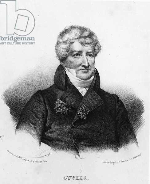 Portrait of Georges Cuvier (1764-1832)