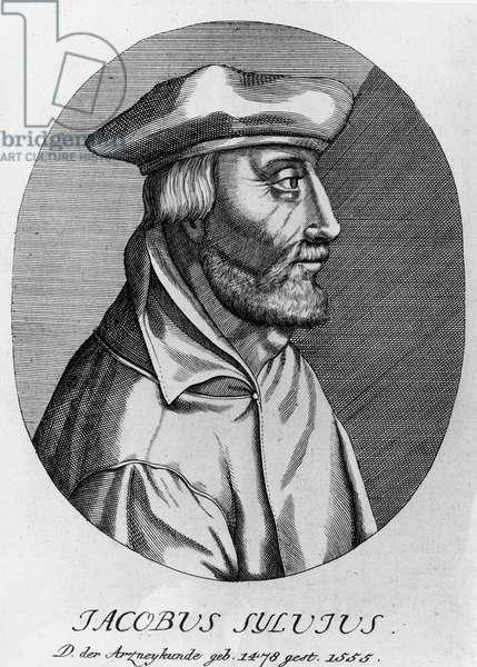 Portrait of Jacobus Sylvius (Dubois, Jacques, d'Amiens), doctor and grammar (1489 -1555)