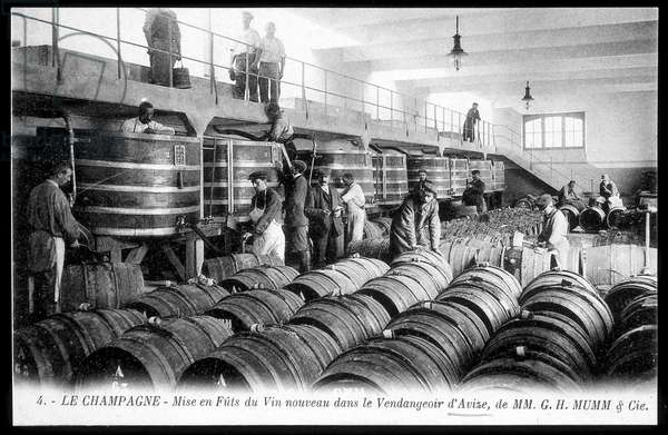 Le Champagne: barrels of the new wine in the grape store of Avisse de la Cie Mumm - postcard, deb. 20th century