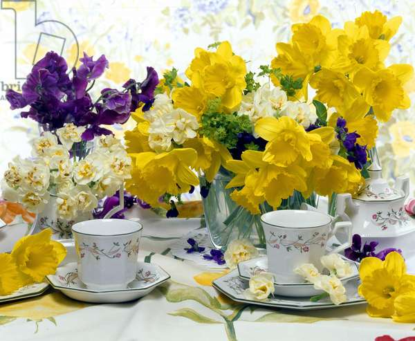 Still life of flowers (daffodils) with a service a the.
