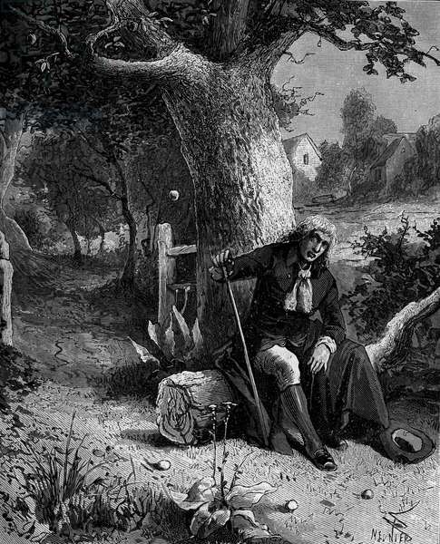 Isaac Newton (1642-1727), English mathematician and astronomer, discovering the notion of earth gravity through an apple falling from an apple tree of Woolsthorpe.
