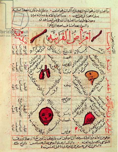 Page from the 'Canon of Medicine' by Avicenna (Ibn Sina) (980-1037) (vellum)