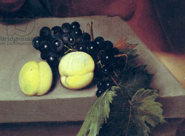 The Sick Bacchus, detail of peaches and grapes, 1591 (oil on canvas) (see 55903)