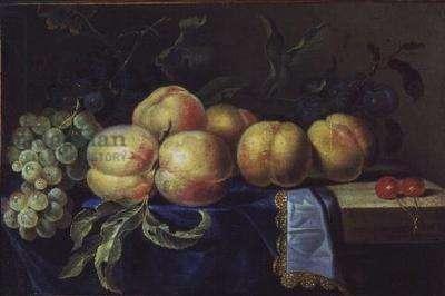 Still Life of Fruit (oil on canvas)