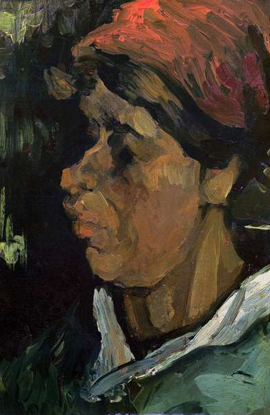 Head of a Dutch Peasant, 1884 (oil on canvas)
