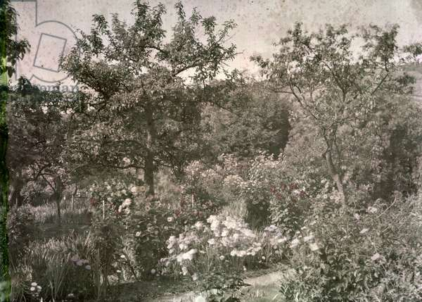 View of Giverny, Monet's Garden, early 1920s (photo)