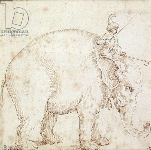 Elephant Hanno and his Mahout (pen & ink on paper)